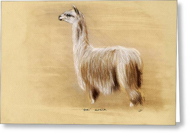 Suri Alpaca Greeting Card by Sara Cuthbert