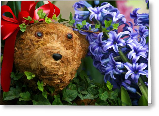 Surprise Greeting Card by Brian Davis