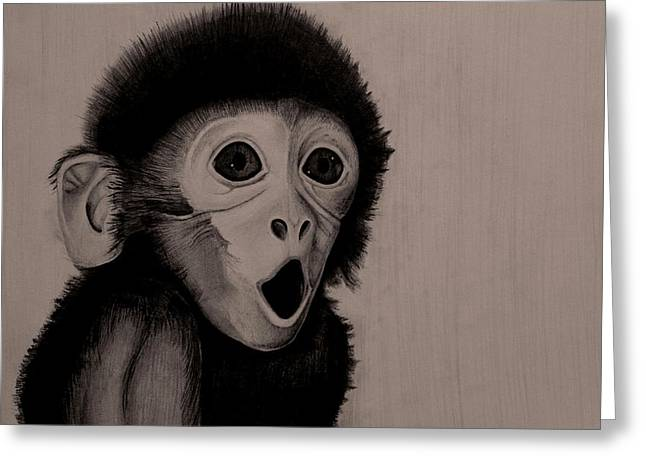 Surprised Baby Monkey Greeting Card