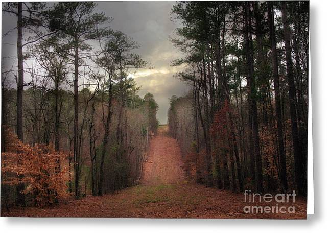 Surreal Autumn Fall South Carolina Tree Landscape Greeting Card by Kathy Fornal