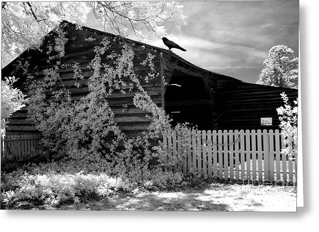 Surreal Black And White Infrared Gothic Nature Barn Landscape With Black Raven Greeting Card by Kathy Fornal