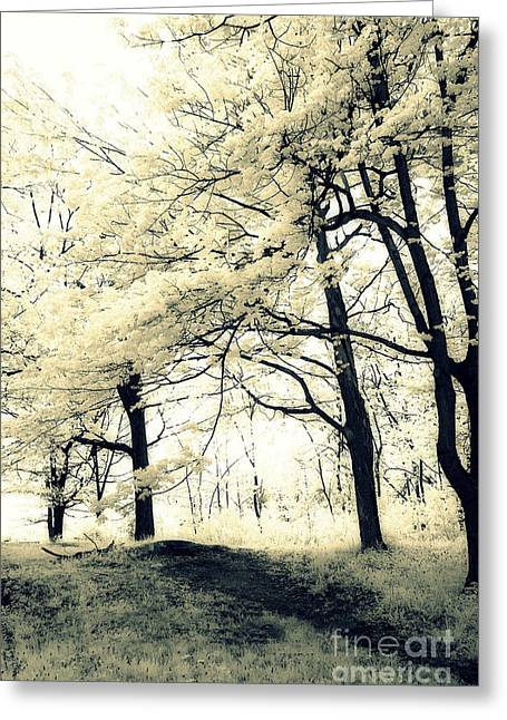 Surreal Dreamy Fantasy Nature Trees Yellow Spring Landscape Greeting Card by Kathy Fornal