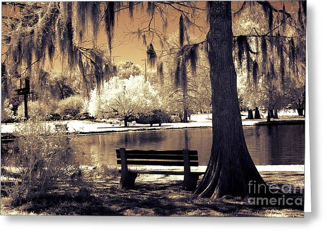Surreal Fantasy Ethereal Infrared Sepia Park Nature Landscape  Greeting Card