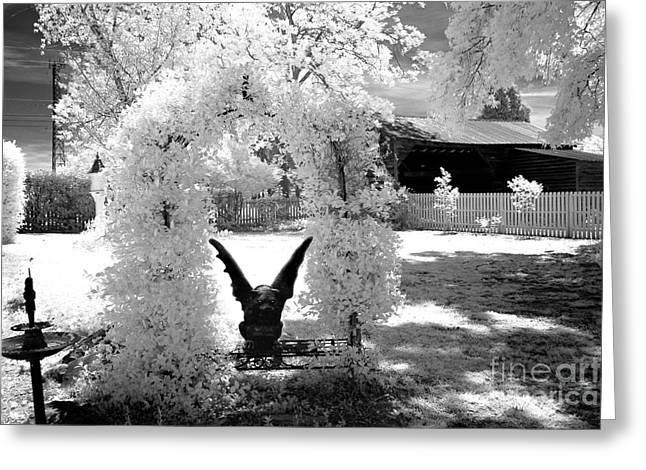 Surreal Black And White Infrared Gargoyle In Park - Gothic Gargoyle Infrared Nature Landscape Greeting Card by Kathy Fornal