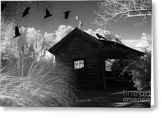 Surreal Gothic Black And White Infrared Nature Haunting Old House With Flying Ravens Greeting Card by Kathy Fornal