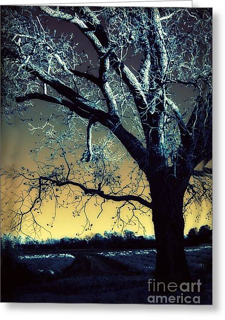Surreal Gothic Fantasy Blue Tree Nature Sunset  Greeting Card by Kathy Fornal