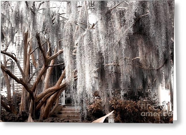 Surreal Gothic Savannah House Spanish Moss Hanging Trees - Savannah Sepia Brown Moss Trees Greeting Card