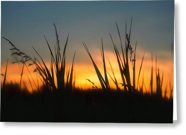 Surreal Sunset Greeting Card