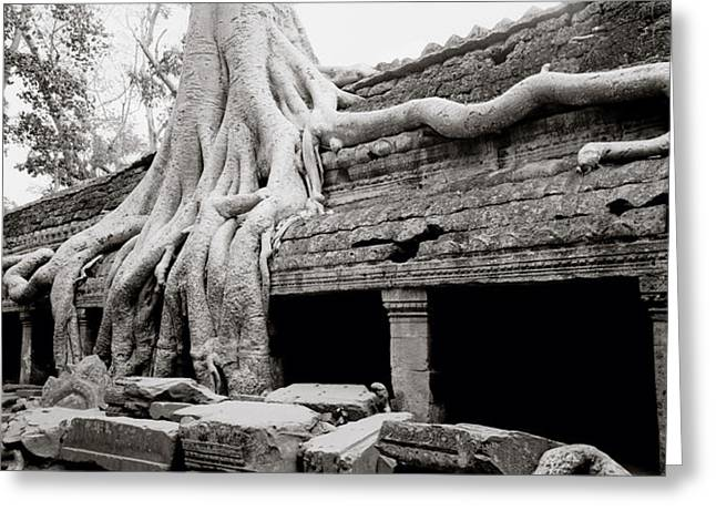 Surreal Ta Prohm Temple Greeting Card by Shaun Higson