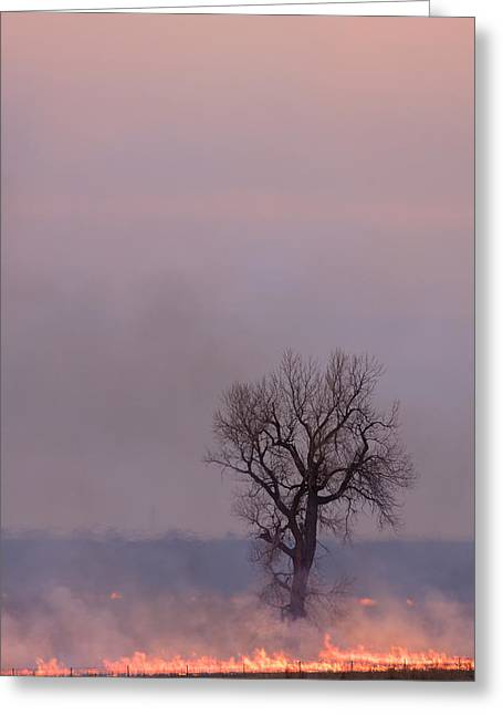 Greeting Card featuring the photograph Surrounded By Fire by Scott Bean