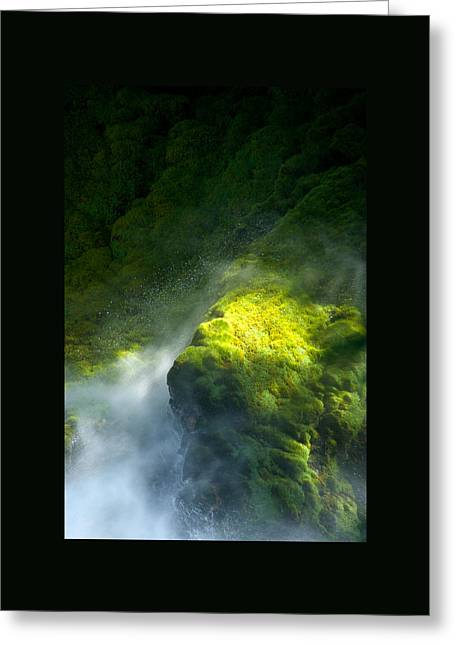Surrounded By Mist   Vertical Greeting Card by Mary Lee Dereske