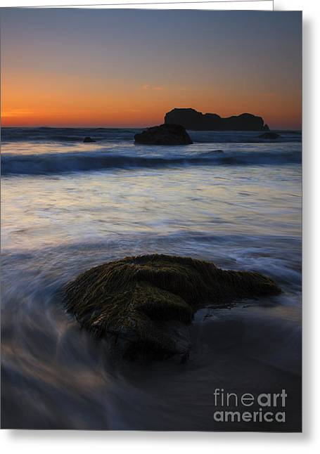 Surrounded By The Tide Greeting Card by Mike  Dawson
