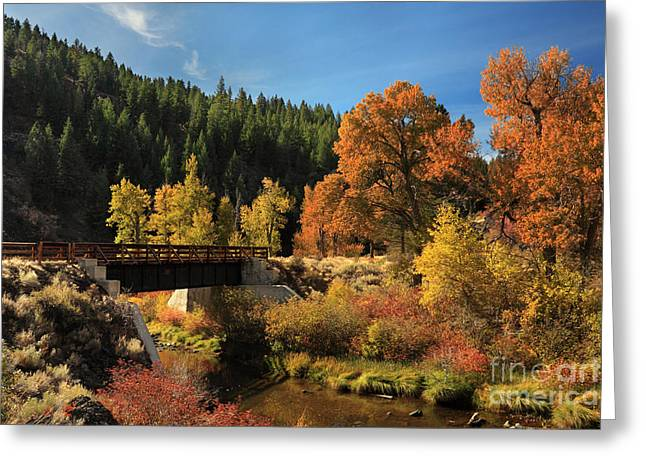 Susan River Bridge On The Bizz 2 Greeting Card