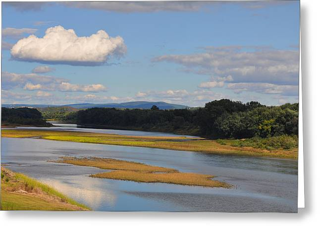Susquehanna River  Greeting Card by Bill Cannon