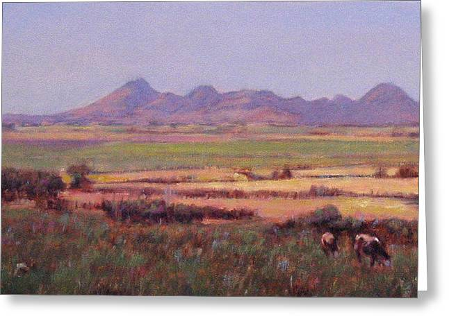 Sutter Buttes In Summer Afternoon Greeting Card by Takayuki Harada