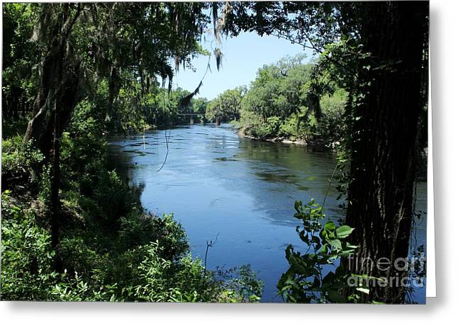 Suwanee River View Greeting Card by Theresa Willingham