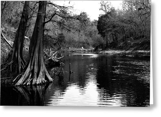 Suwannee River Black And White Greeting Card
