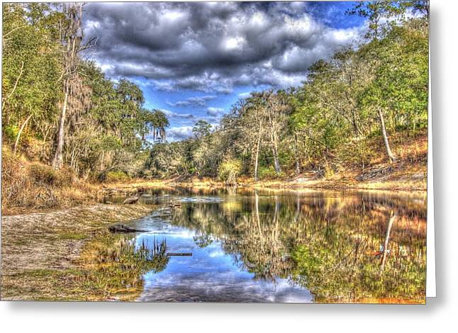 Suwannee River Scene Greeting Card by Donald Williams