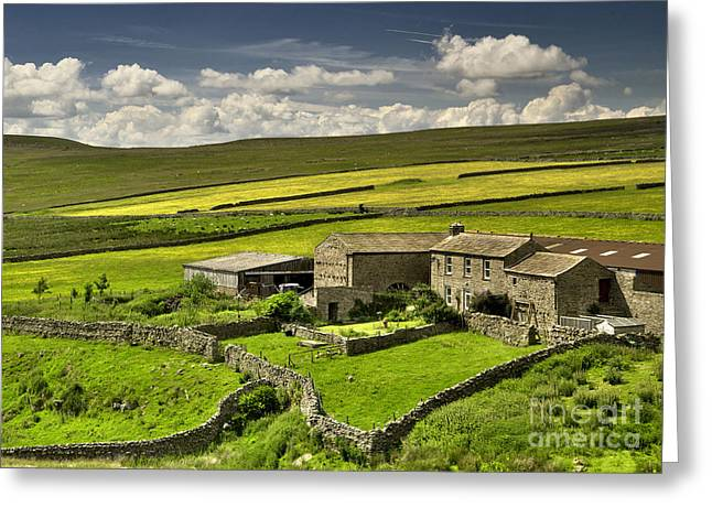 Swaledale Farm Greeting Card