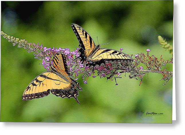 Swallowtail Butterflies 276 Greeting Card by EricaMaxine  Price