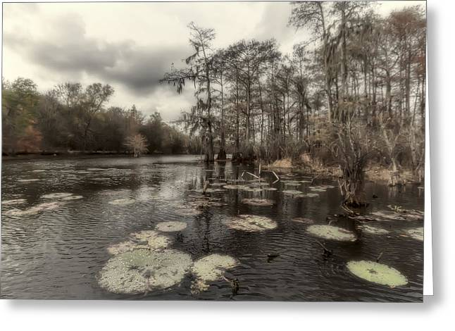 Swamp Alive Greeting Card by Stellina Giannitsi