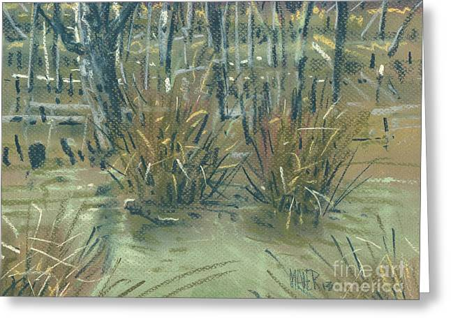 Swamp Grass Greeting Card by Donald Maier
