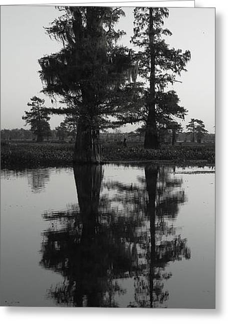 Greeting Card featuring the photograph Swamp Mirror by Silke Brubaker