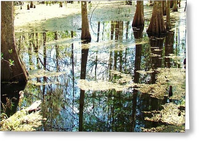 Swamp Wading 5 Greeting Card by Van Ness