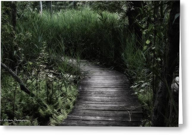 Swamp Walk Greeting Card by Glenn Thompson