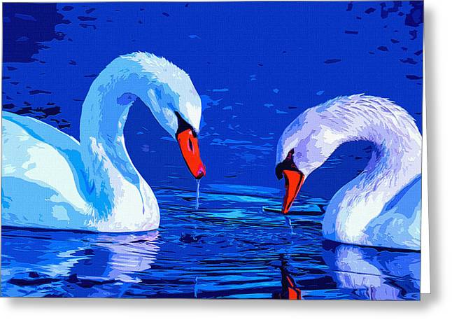 Swan Bond Greeting Card by Brian Stevens