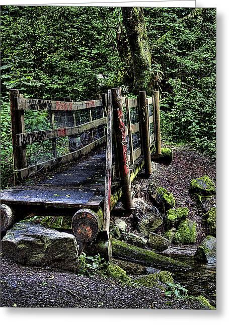 Swan Creek Footbridge Greeting Card by David Patterson
