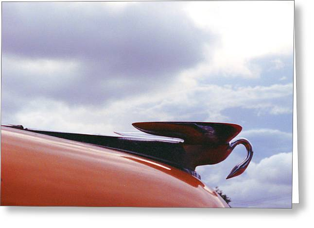 Swan Hood Ornament Greeting Card