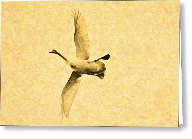 Swan In Oil Paint Greeting Card by Tommytechno Sweden