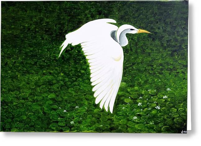 Swan-oil Painting Greeting Card by Rejeena Niaz