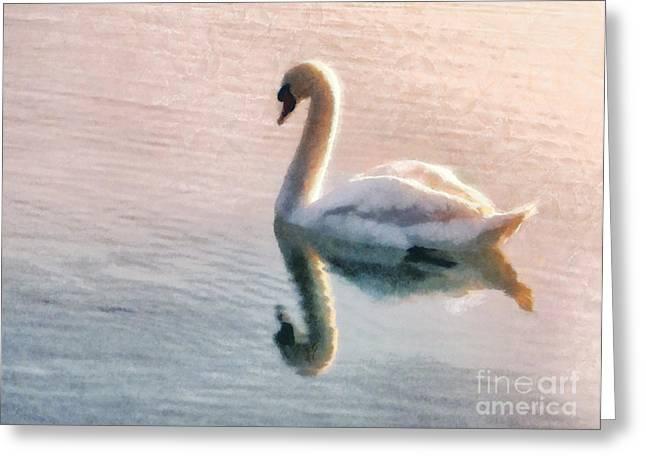 Swan On Lake Greeting Card by Pixel  Chimp
