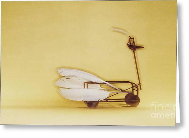 Swan On Wheels Greeting Card