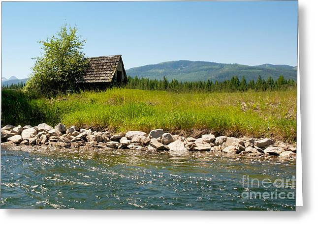 Swan River Cabin Greeting Card by Vinnie Oakes