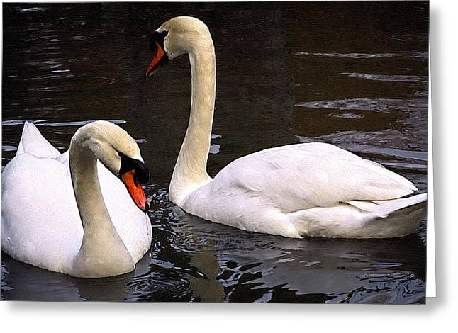 Swan Two Greeting Card