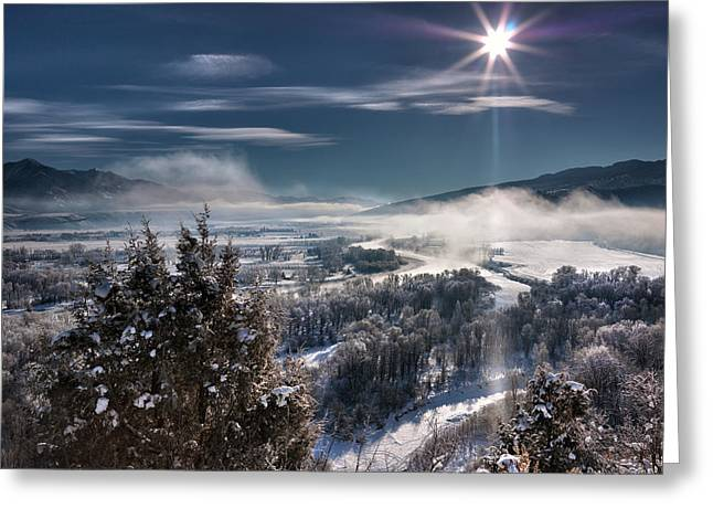 Swan Valley Winter Greeting Card by Leland D Howard