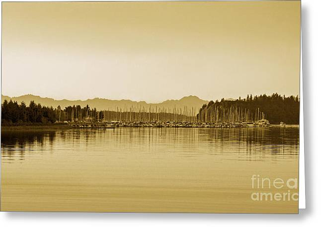 Swantown Marina And The Olympics In Sepia Greeting Card