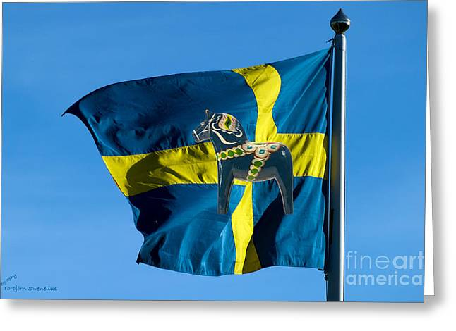 Sweden Two Symbols Greeting Card by Torbjorn Swenelius