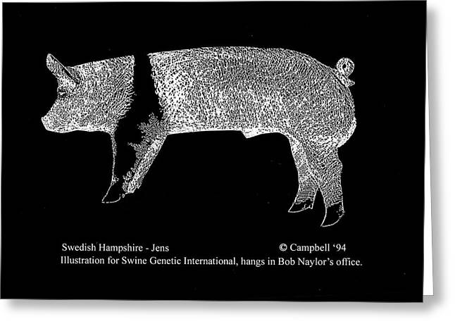 Greeting Card featuring the drawing Swedish Hampshire by Larry Campbell