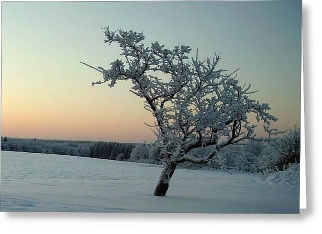 Swedish Winter Greeting Card by Carola Ann-Margret Forsberg
