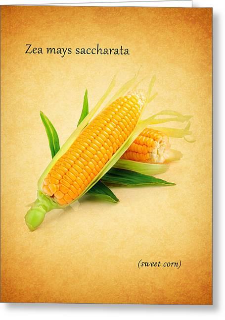 Sweet Corn Greeting Card by Mark Rogan