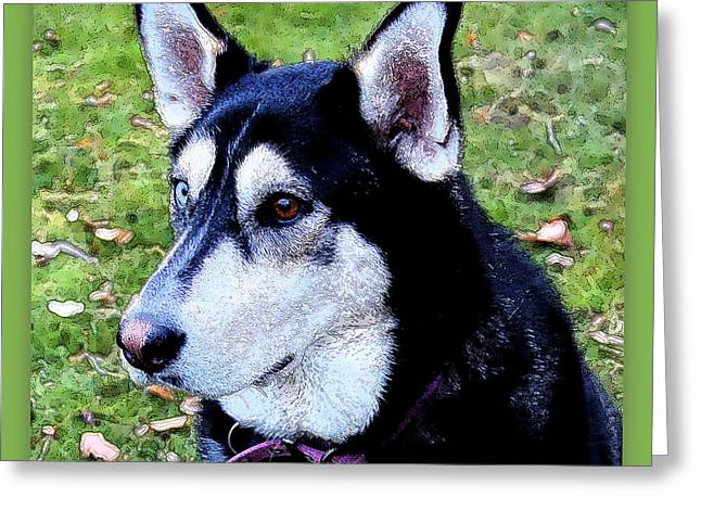 Sweet Dog Face Greeting Card by Carol Groenen