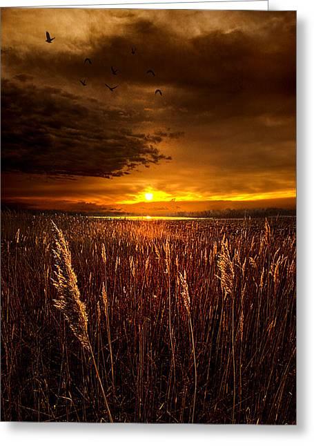 Sweet Dreams Greeting Card by Phil Koch
