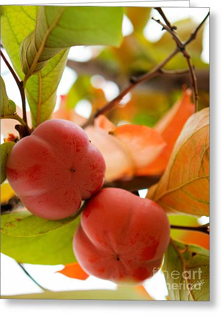 Greeting Card featuring the photograph Sweet Fruit by Erika Weber