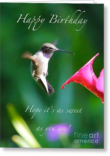 Sweet Hummingbird Birthday Card Greeting Card by Carol Groenen