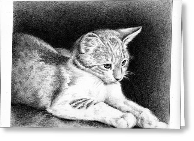 Sweet Kitty Greeting Card