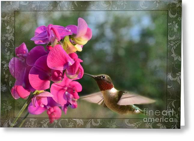 Sweet Pea Hummingbird IIi Greeting Card by Debbie Portwood